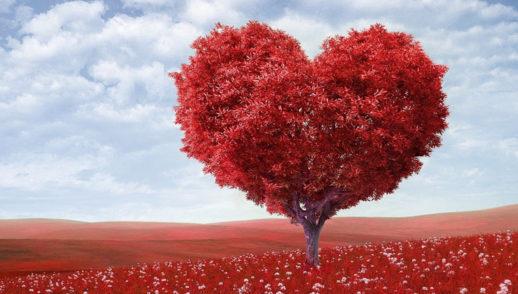 Jak kochać, by kochać? - 31. Niedziela Zwykła