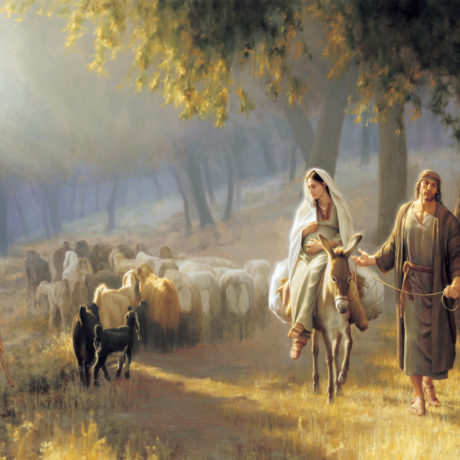 Ogłoszenia duszpasterskie na 4. Niedzielę Adwentu