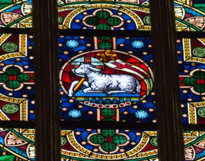 Życzenia wielkanocne Proboszcza katedry