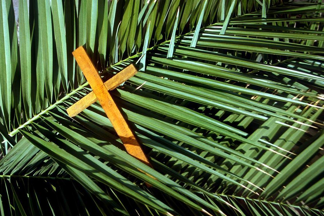 Ogłoszenia na Niedzielę Palmową